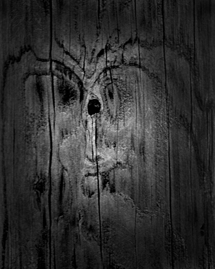 Face in a Telephone Pole